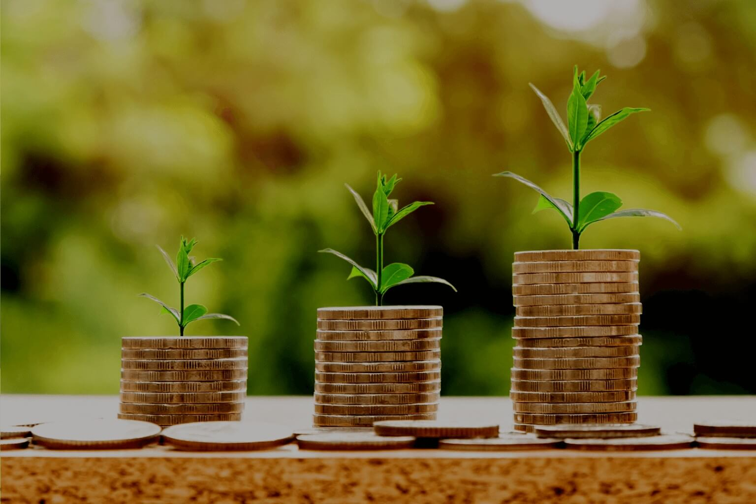 Small Business Growth | Funding for Small Businesses